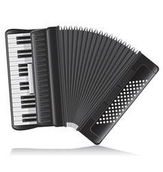 Accordion 02 vector