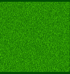 green grass textured background vector image vector image
