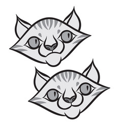 cartoon smiling tabby cat vector image