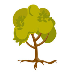 green tree with roots cartoon vector image