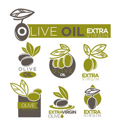 olive oil extra virgin product label vector image vector image