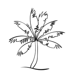 Palm tree icon in outline style isolated on white vector image