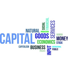 word cloud capital vector image