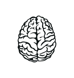 Outline of human brain vector