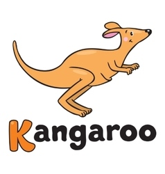 Little kangaroo for abc alphabet k vector