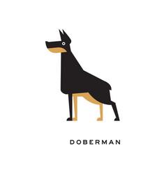 cartoon doberman standing in pose vector image
