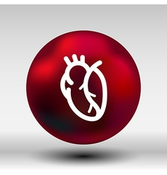 red human heart icon cardio cardiovascular vector image