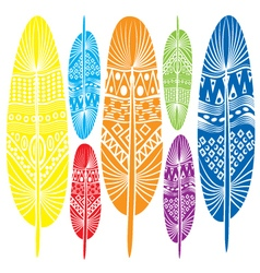 Stylized decorative feathers vector image