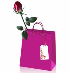 Rose in paper bag vector