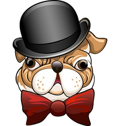 Bulldog in a bowler hat vector