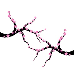 Pink plum blossom vector