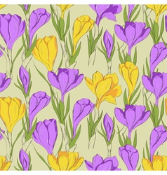 Crocus seamless patterm 2 purple yellow vector