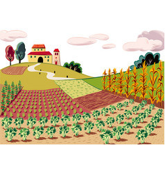 Agricultural landscape cultivated with various vector