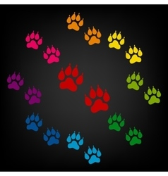 Animal tracks icon vector