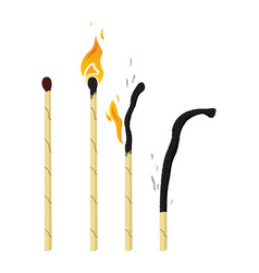 burning and burnt match vector image