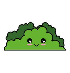 Bush icon image vector