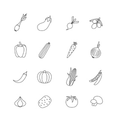 Vegetables Lined Isolated Icon Flat Set vector image vector image