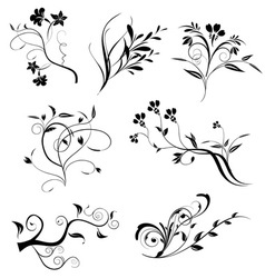 Floral elements in various styles vector image