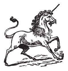 Unicorn vintage vector