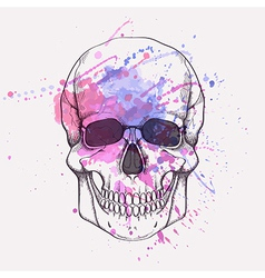 Human skull with watercolor splash vector