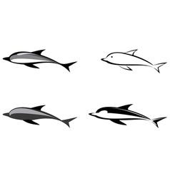 Dolphin logos vector
