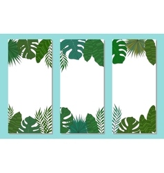Vertical frame of palm tree leaves Tropical card vector image vector image