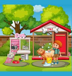 Pet houses in the garden vector