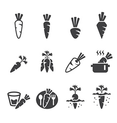 carrot icon set vector image vector image