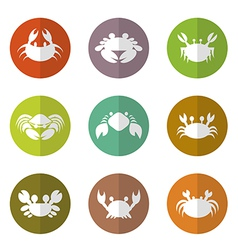 Group of crab in the circle vector