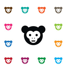 Isolated capuchin icon chimp element can vector