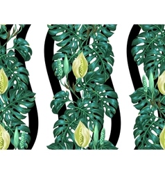 Seamless pattern with monstera leaves Decorative vector image vector image