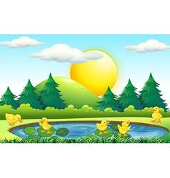 Five little ducks in the pond vector