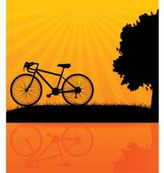bicycle orange vector image