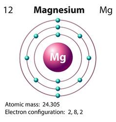 Diagram representation of the element magnesium vector image