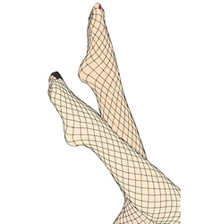 Feet and fishnet stockings vector