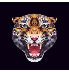 Tiger polygonal graphics vector