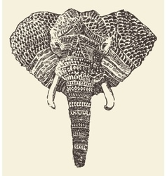 Ethnic elephant head hand drawn sketch vector image vector image