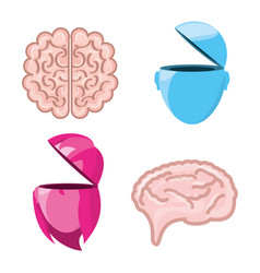 Set icon knowledge and creativity vector