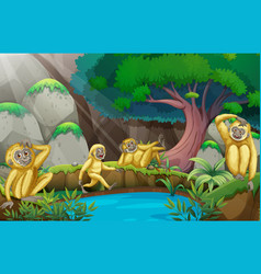 four gibbons in the forest vector image