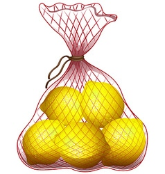 Fresh lemon in net bag vector image vector image