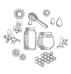 Beekeeping and fresh honey icons vector