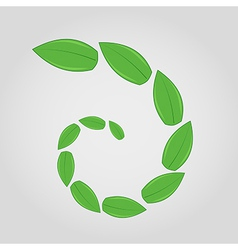 Green leaves in spiral vector