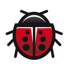 Red spotted ladybird or ladybug vector image