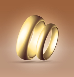 Two parallel golden rings vector image