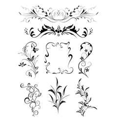 Floral ornament collection vector image