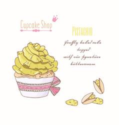 Hand drawn cupcake pistachio flavor vector