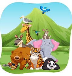 Wild animals in the field vector image vector image