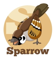 Abc cartoon sparrow vector
