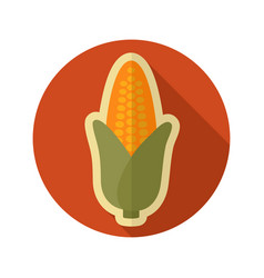 Corn flat icon vegetable vector