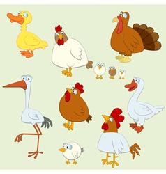 Farm birds vector image vector image